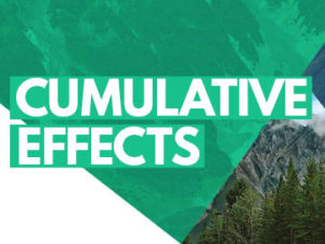 Cumulative Effects 2018